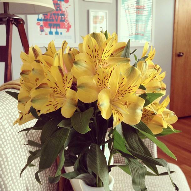 flowers_april