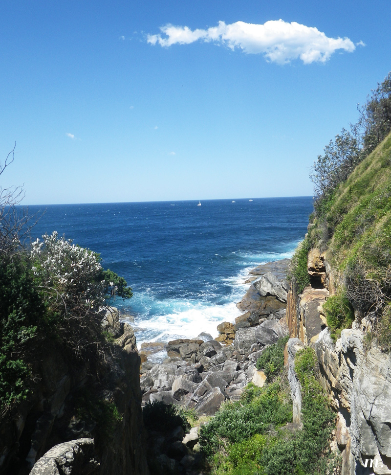 Manly4