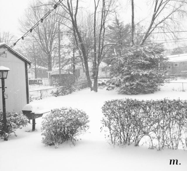 Snow_Day07