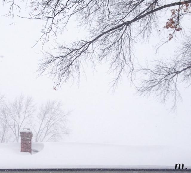 Snow_Day08