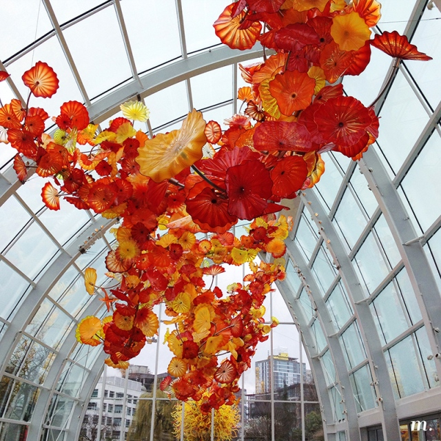 Chihuly1